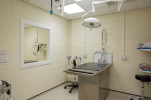Blairgowrie dental room