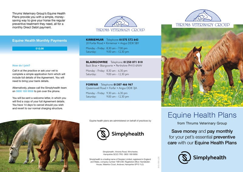 Equine Health Plan